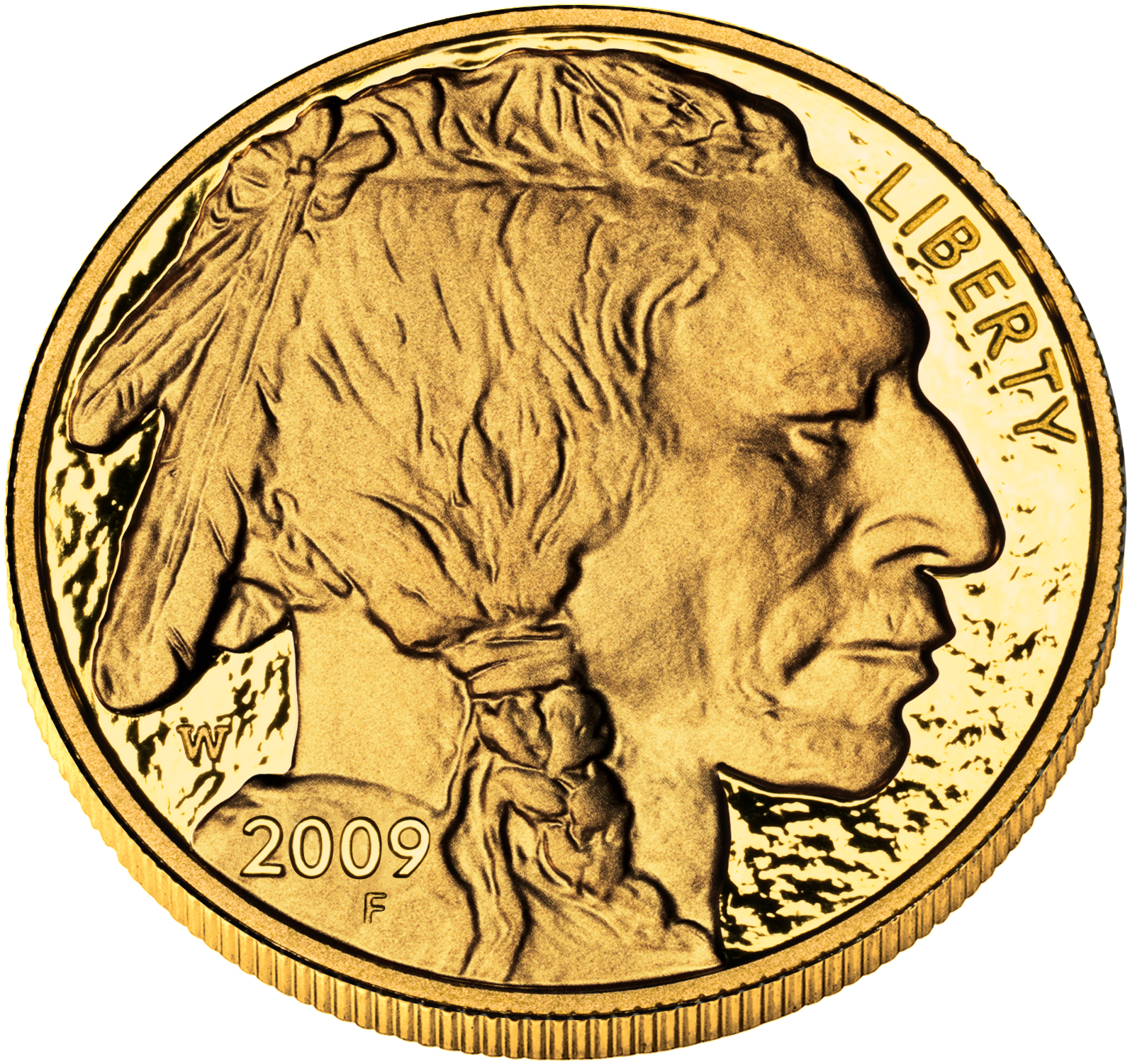 2010 American Buffalo Gold Proof Coin, Obverse (2009 version shown) - Click to Enlarge