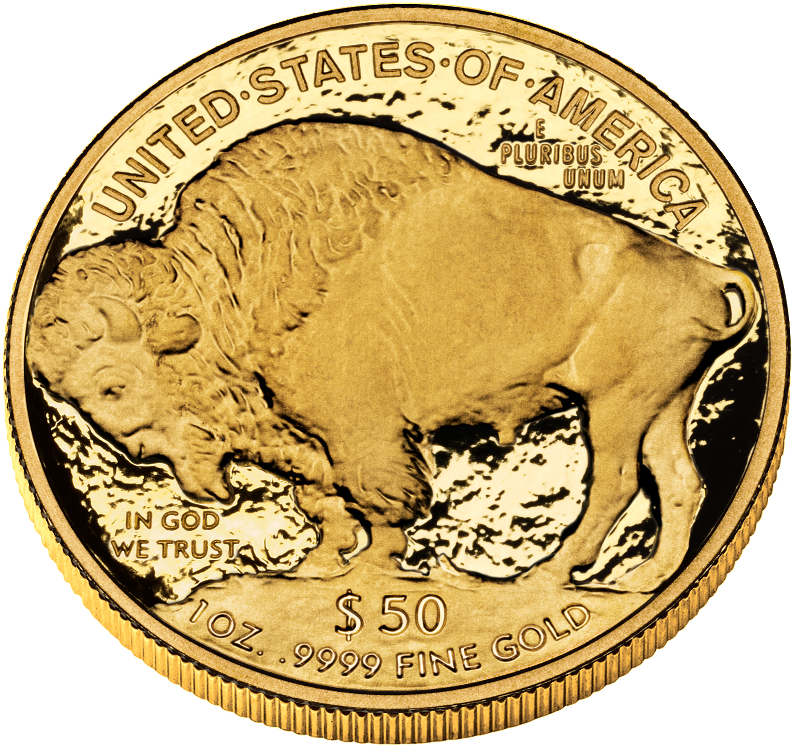 2010 American Buffalo Gold Proof Coin, Reverse (2009 version shown) - Click to Enlarge